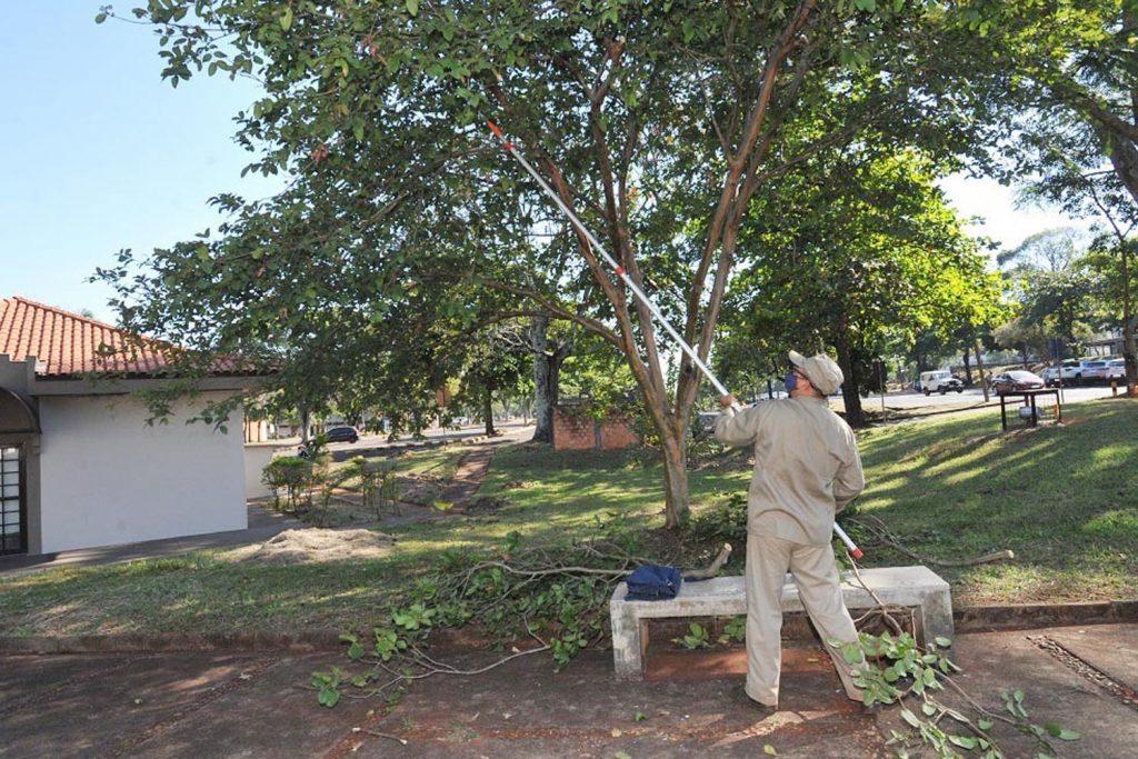 Serviços de jardinagem e paisagismo aumentam a visibilidade e a segurança no Campus